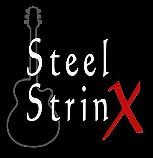 Logo Steel Strinx